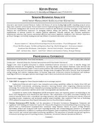 Business Analyst Resume Summary Unique It Business Analyst Resume