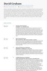 Web Developer Resume Examples 12 Freelance Web Developer Resume Samples