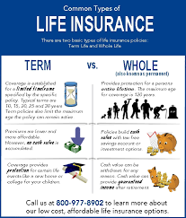 whole life insurance quotes for children prepossessing life insurance 101 learn the basics of term life
