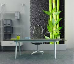 Modern Wall Murals Decorating Ideas Glass Desk And Modern Desk Chair In Fantastic