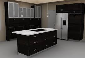 Kitchen. Remarkable Modern Kitchen Ideas With Absolute Dark Wooden Cabinet  Organizer Glass Doors Combined White