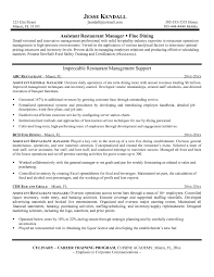 Assistant Operation Manager Resume Attractive Ideas Resume Summary