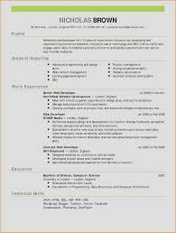 Best Of Pilot Resume Sample Resume Examples