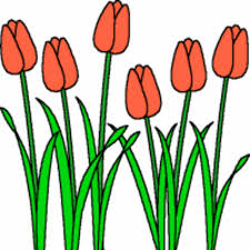 Image result for garden flowers clipart