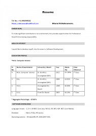 Build Resume Online Resumes A Free Printable My Thomasbosscher