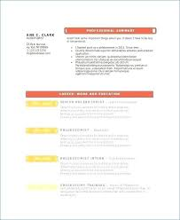 Shidduch Resume Delectable Police Chief Resume From Shidduch Resume Example Free Resume