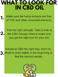 King Kanine Llc What To Look For In Cbd Oil Milled