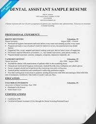 Dental Resume Sample Resume Letters Job Application
