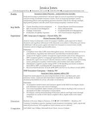 Resume For Claims Adjuster Insurance Resume Examples Customer