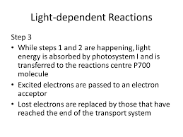 light dependent reaction equation