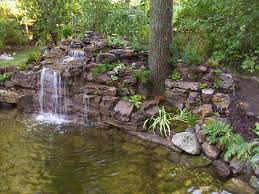 Small Picture Garden Pond Ideas Garden Design Ideas