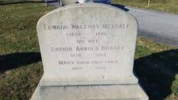 Sophia Arnold Bussey Metcalf (1828-1908) - Find A Grave Memorial