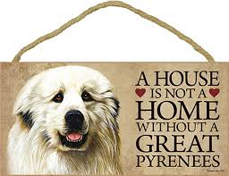great pyrenees wood dog sign wall plaque photo display 5 x 10 bonus coaster