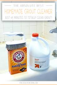 bathtub drain cleaner homemade