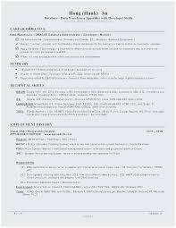 Oracle Dba Sample Resumes Custom Teradata Sample Resume Terrific Classy Teradata Resume Sample