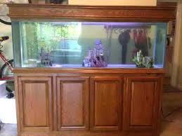 75 gallon aquarium hood canopy stand and ideas plans bow front