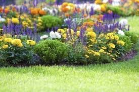 how to plant a flower garden. How To Start Your Flower Garden Plant A D