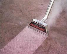 carpet wand. carpet cleaning wand