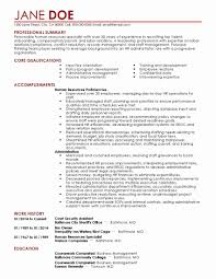 Resume Template For Construction Elegant Functional Resume Examples