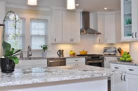 white shaker kitchen cabinet. White Kitchen Cabinets | Ice Shaker Door Style Cabinet Kings Transitional-kitchen C
