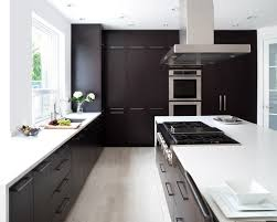 dark cabinet kitchen designs. Dark Cabinet Kitchen Kitchens Ideas Pictures Remodel And Decor Painting Designs T