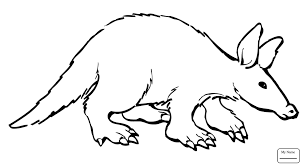 aardvark animal coloring pages