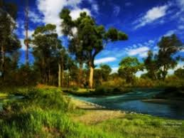 new nature wallpaper. Contemporary Nature The New Eden Wallpaper Photo Manipulated Nature And