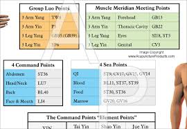 Acupuncture Point Classifications Poster 24 X 36