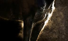 sweating allows your horse to regulate his temperature by shedding excess heat if