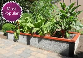4 x8 x1 rectangle raised garden bed kit