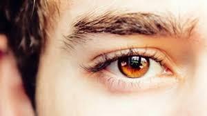 Hazel Eye Chart Learn About The Origin Of Amber Eyes In People Guy Counseling