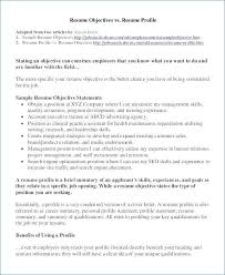 Writing A Resume Summary Magnificent Writing Resume Summary writing a resume summary from resume summary