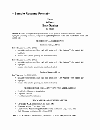 Resume Copy Copy and Paste Resume Template Lovely Copy A Resume Copy Of A 7