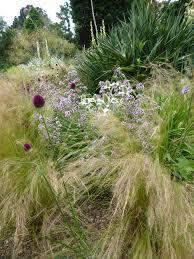 Small Picture Expert Advice 11 Tips for Gravel Garden Design Gardenista