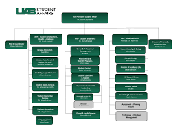 Student Life Org Chart Division Of Student Affairs Student Affairs Uab