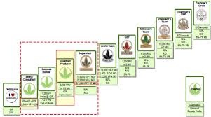 Herbalife Marketing Plan Overview Ezhb