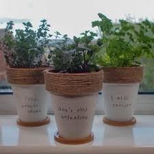 diy painted terracotta plant pots with herb puns 2