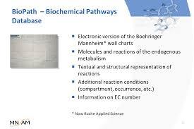 Biopath Database On Biochemical Pathways Mn Am