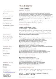 Sample Resume: Sle Sales Team Leader Resume And..
