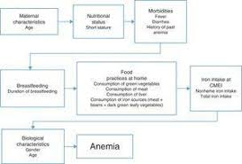 Prevalence And Risk Factors Of Anemia In Children Jornal