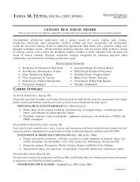 Property Agent Resume Real Resume Examples Real Estate Agent Resume Sample Real Estate
