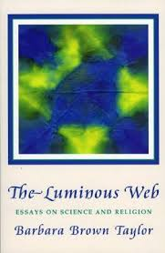 luminous web essays on science and religion by barbara brown