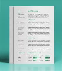 Indesign Resume Template Whitneyport Daily Com