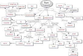 Biologically Important Organic Molecules Original Document
