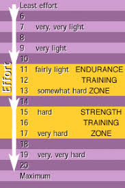Borg Rpe Scale 1 20 Google Search Physical Therapy