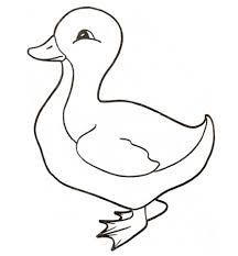 Small Picture Duckling coloring page Free Printable Coloring Pages