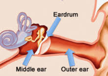 free images of double ear infection साठी इमेज परिणाम