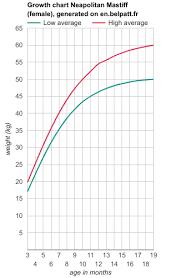 English Mastiff Growth Chart Height Mastiff Height Chart Height Weight Chart American Male