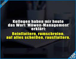 Ganz Normaler Büroalltag Möwen Management Reinflattern Jodel