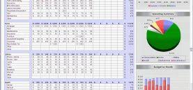 Budget Planner Quick Excel Spreadsheet For Home Epaperzone